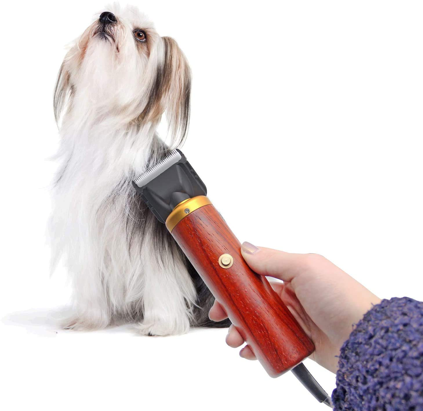 CGOLDENWALL Professional Hairy Rabbit Clipper Pet Hair Trimmer 3m Wire 55W Samo Tedi Electric Shaver for Rabbit//Dog//Cat//Sheep and Other Animals 220V