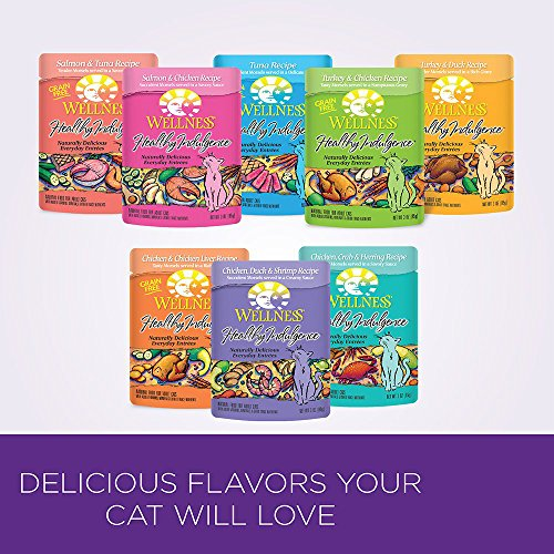Wellness Healthy Indulgence Salmon & Chicken Natural Wet Cat Food, 3-Ounce Pouch (Pack of 24)