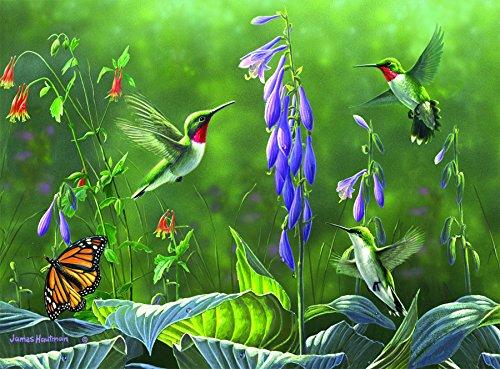 Buffalo Games Hautman Brothers Hummingbirds product image