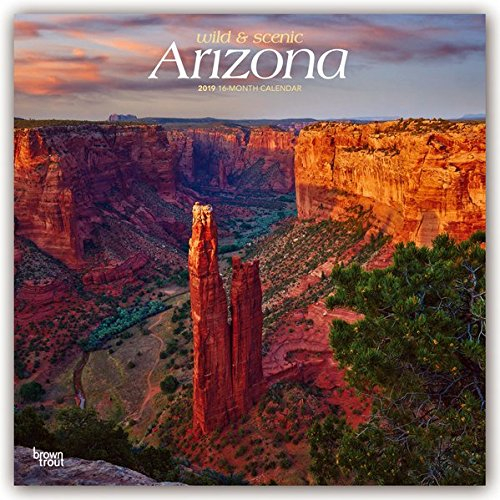 Arizona, Wild & Scenic 2019 12 x 12 Inch Monthly Square Wall Calendar, USA United States of America Southwest State Nature