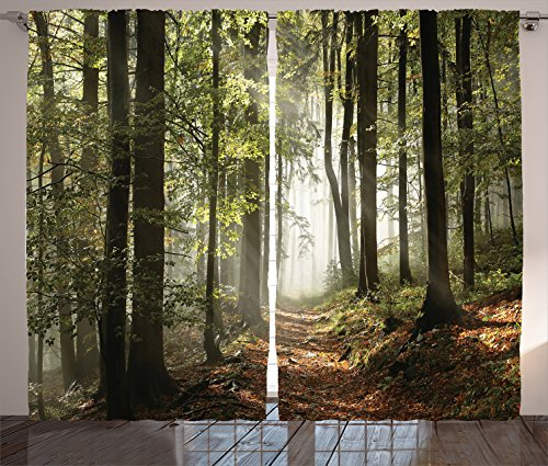 Ambesonne Farm House Decor Collection, Autumnal Forest Pathway in the Mountains With Mist in the Distance Wilderness Scene, Living Room Bedroom Curtain 2 Panels Set, 108 X 84 Inches, Green Brown from Ambesonne