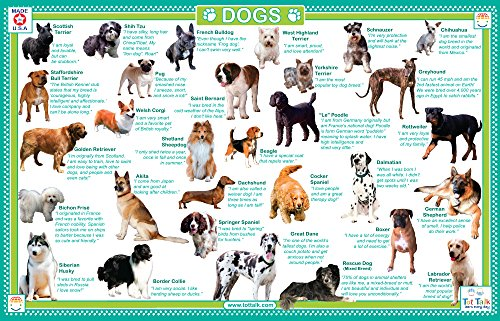 Tot Talk Dogs Educational Placemat for Kids, Washable and Long-Lasting