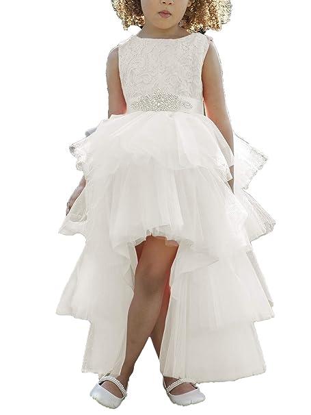 Amazon.com: Vestido de tutú con encaje para niñas de flores ...