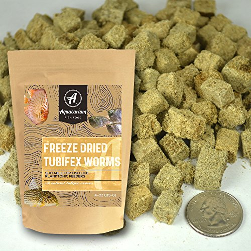 Tubifex Worms Freeze Dried Bulk Tropical Fish Food by Aquacarium (1/2 (Food Tubifex Worms)