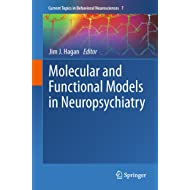 Molecular and Functional Models in Neuropsychiatry (Current Topics in Behavioral Neurosciences Book 7)