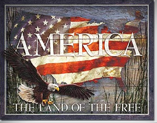 America The Land Of The Free TIN SIGN American Flag Patriotic Wall Poster Decor for Home/Man Cave Decor by PrettyMerchant