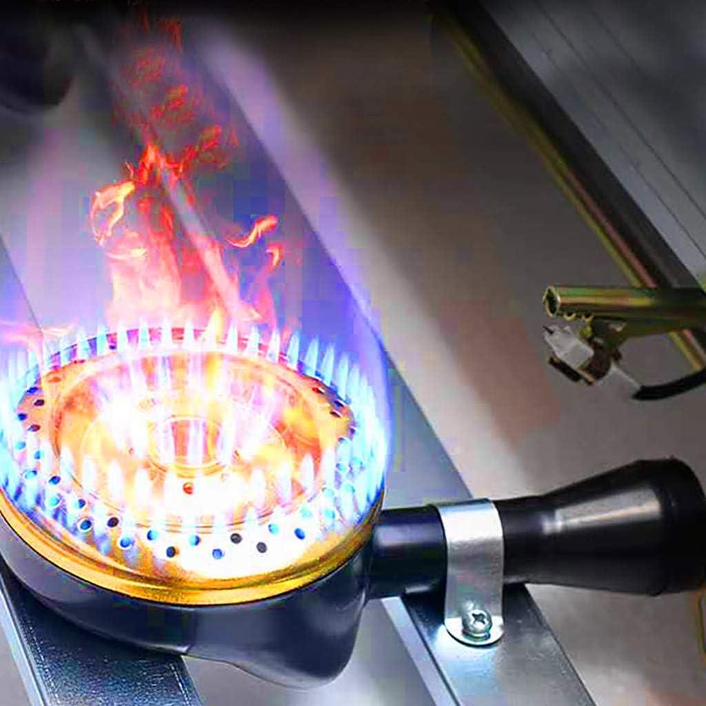 Friteuse Commerciale 6L 12L en Acier Inoxydable Grande Capacit/é Friteuse /À Gaz Simple Cylindre//Double Cylindre Friteuse De Bureau Super Puissance De Feu