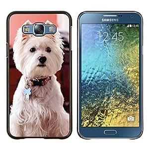 TECHCASE---Cubierta de la caja de protección para la piel dura ** Samsung Galaxy E7 E700 ** --West Highland White Terrier perro canina