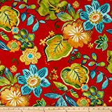 Swavelle/Mill Creek Indoor/Outdoor Auclair Screen Blaze Fabric By The Yard offers