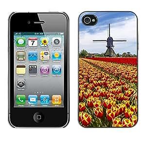 Print Motif Coque de protection Case Cover // V00001832 Tulipán del color del arco iris granja // Apple iPhone 4 4S 4G