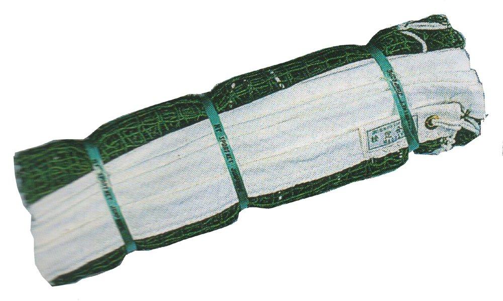 【国内正規総代理店アイテム】 KT TERANISHI(ケイティテラニシ) バトミントンネット ソフトアラミドロープ付(日本バトミントン協会検定) B01C4295XY 緑色 KT 緑色 KT-2517 B01C4295XY, 湯もみの鉄人:b7eef1f3 --- vanhavertotgracht.nl