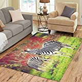 Silly Meow Zebras of Africa Area Rug Custom Area Rugs Floor Cover For Living Room Dining Room Bedroom Place Mat