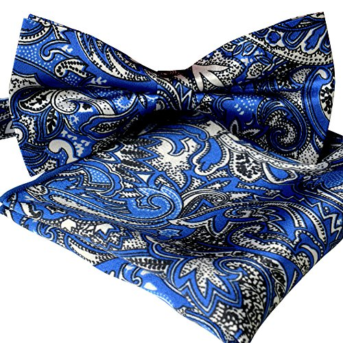 ST34 Brand New Multi-colored Paisley Stripes Silk Feel Satin Bow ties for Men-Various Colors
