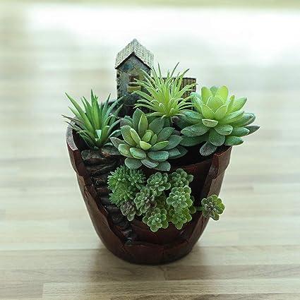 Amazon.com: Akarden - Maceta de hadas para jardín con diseño ...