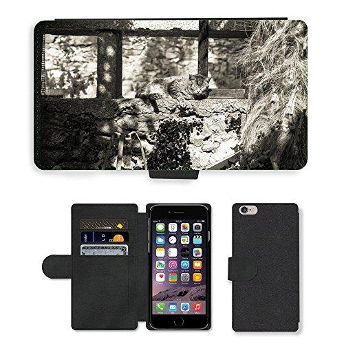 "Just Phone Cases PU Leather Flip Custodia Protettiva Case Cover per // M00128624 Cat Garden Sleep mur Sun Pause // Apple iPhone 6 PLUS 5.5"""