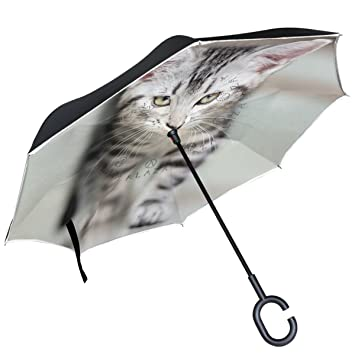 ALAZA Cute Cool American gato gatito paraguas invertido doble capa resistente al viento Reverse paraguas