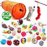 30 Pcs Cat Toys Interactive Kitten Toys - Emazon Online Kitten Toys Assortments for Indoor Cats,2 Way Tunnel,Variety Pack of Catnip Toy, Kitten Feather Wand,Bell Crinkle Balls, Cat Teaser Toy and Spring, Toy Mice for Cat Puppy Kitty