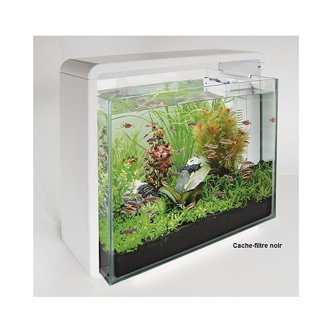 Superfish Home - Acuario para Acuario (40 L), Color Blanco: Amazon.es: Productos para mascotas