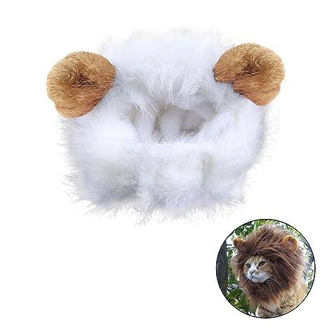 Disfraz para gato melena de León peluca con Scratch