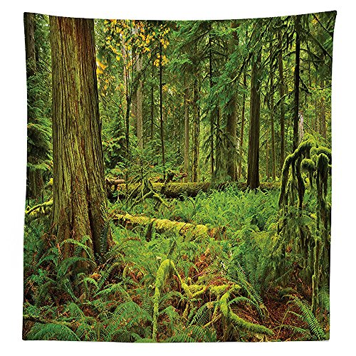 farm-house-decor-tablecloth-idyllic-lush-rainforest-in-canadian-island-with-ferns-moss-on-tree-natur