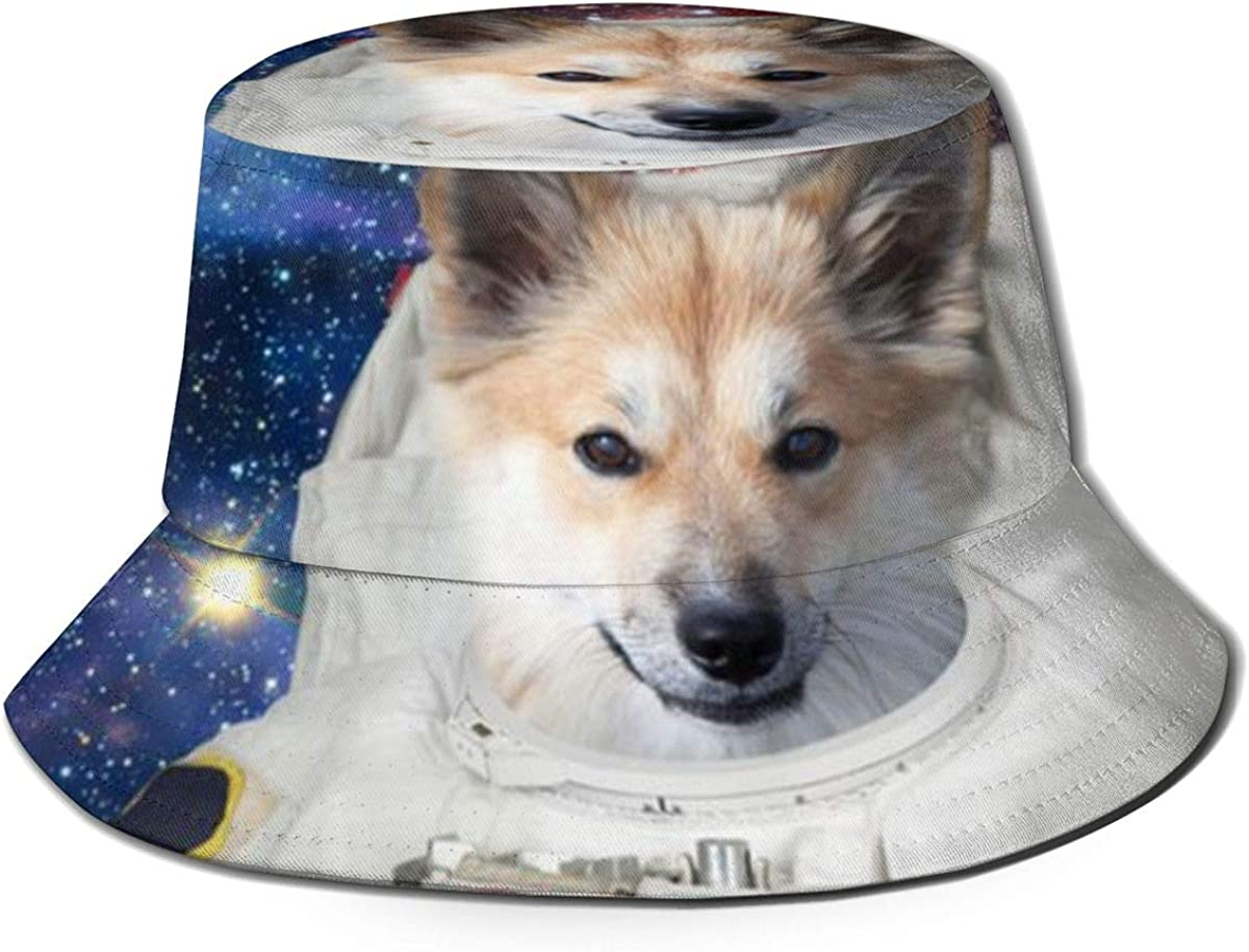 Dog Astronaut With Space...