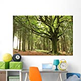 Faouenn Ponthus Wall Mural by Wallmonkeys Peel and Stick Graphic (72 in W x 48 in H) WM139574