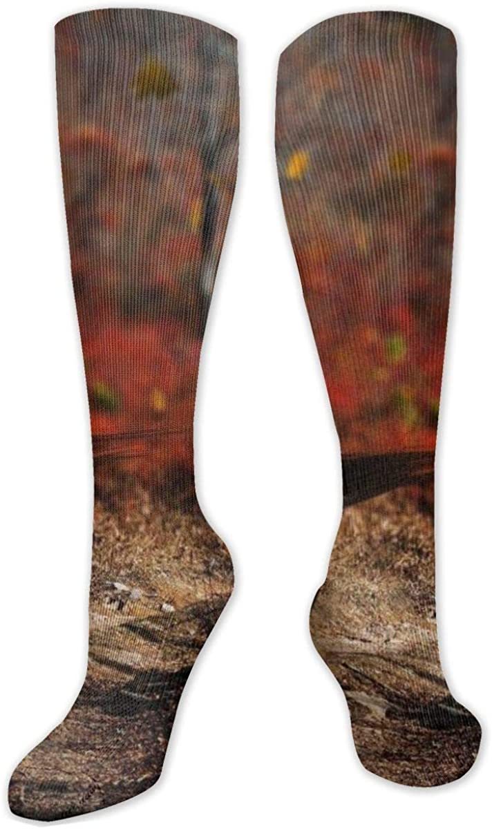 Calcetines de compresión para hombre y mujer, ideales para correr, deportes atléticos, venas varicosas, caballos de carreras