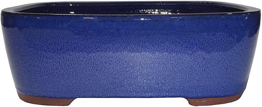 Brussel s 10 Rectangle Bonsai Glazed Ceramic Pot Large, Blue