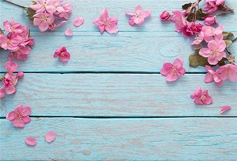 Amazon Csfoto 8x6ft Background For Pink Flower Petal On Blue