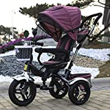 QXMEI Children's Tricycle Bicycle Baby Stroller 1 To 4 Years Old Stroller With Awning,B