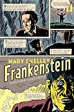 img - for Frankenstein: (Penguin Classics Deluxe Edition) book / textbook / text book
