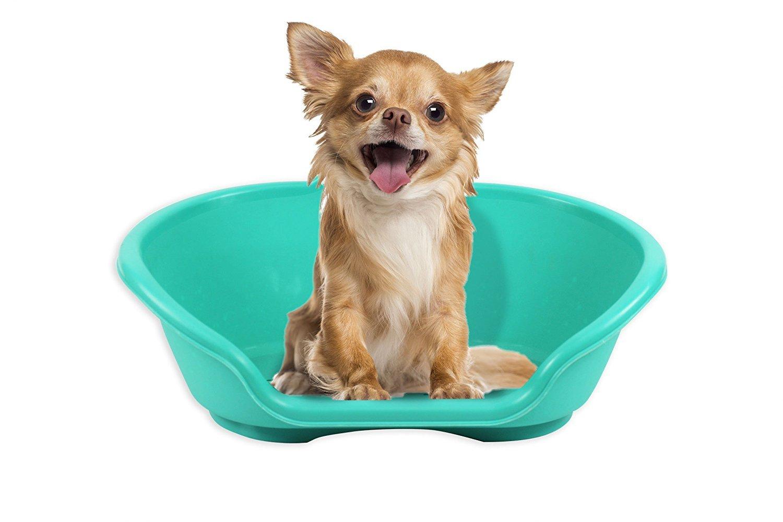 Lecho de plástico para mascotas, impermeable, resistente: Amazon.es: Productos para mascotas