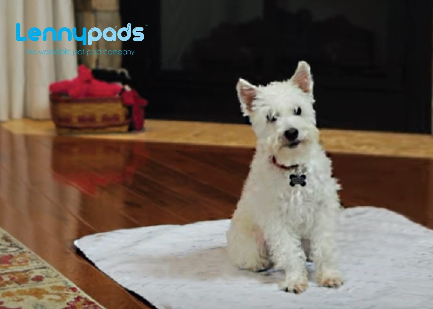 """LennyPads Whelping Pads - Ultra Absorbent, Reusable, Training, Housebreaking and Travel Washable Pee Pads – 6 Pack (48""""x72"""") King Pad"""