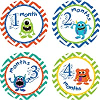 Little LillyBug Designs - Baby Monthly Stickers - Boy - Monsters
