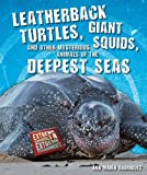 Leatherback Turtles, Giant Squids, and Other Mysterious Animals of the Deepest Seas, Ana María RodríGuez, 1464400199