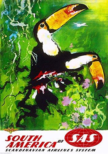 Toucan Bird Duo Scandinavian South America Vintage Travel Poster Advertisement