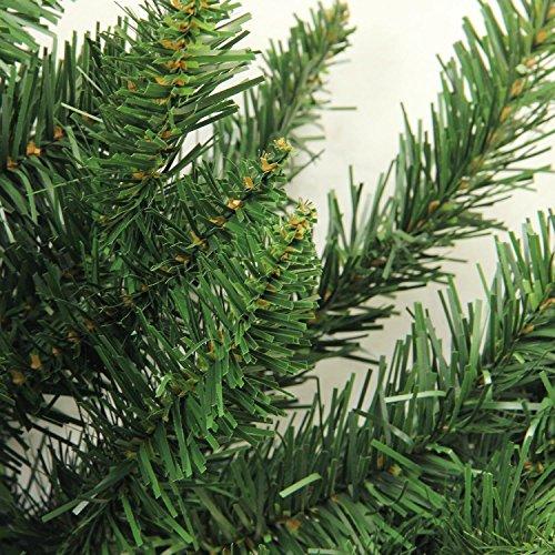 Northlight 2' x 18'' Buffalo Fir Medium Artificial Christmas Wall or Door Tree - Unlit by Northlight (Image #2)