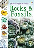 Rocks and Fossils (Usborne Nature Trail)