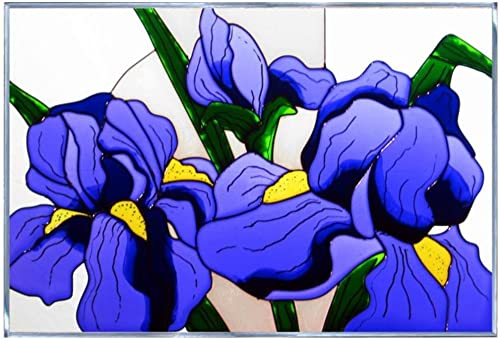 Silver Creek Blue Iris Painted Glass Panel V-291