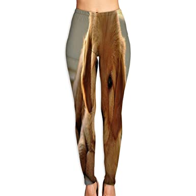 c31272a96f6aa Amazon.com: HU MOVR Womens Yoga Pants Golden Retriever Cute Pet Slim Fit  Leggings Workout Pant: Clothing