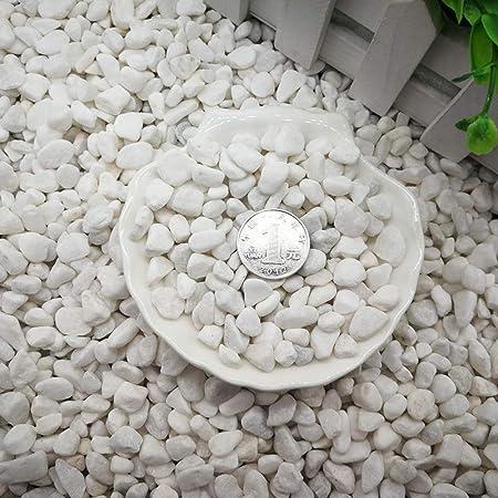 XTXWEN Piedra Blanca Natural, Decorada con Piedra Blanca Original, Decoración De Paisajismo De Acuario, Pavimentación De Piedra En Maceta, 500G / Bolsa,S: Amazon.es: Hogar