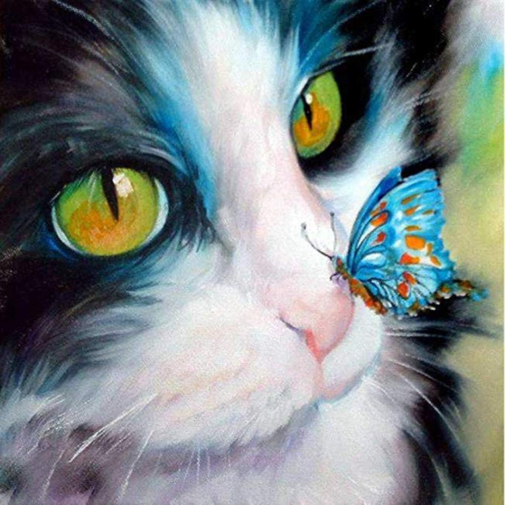 DIY 5D Diamond Painting, Diamond Embroidery Cross Stitch Kit Cat with Butterfly 5D Diamond Rhinestone Painting Crystals Cross Stitch Picture Arts Home Decor Nearzstorn (Cat with Butterfly, 30x30cm) by Nearzstorn