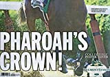 AMERICAN PHAROAH 2015 TRIPLE CROWN CHAMPION NEW YORK DAILY NEWS NEWSPAPER- Collectors Item- Collectible Poster Cover