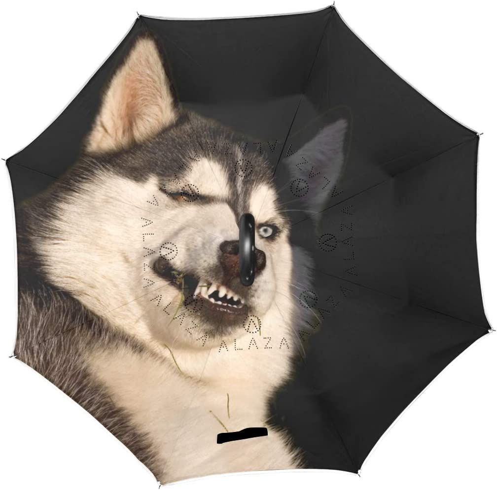 Husky Showing Its Teeth Rainproof and Windproof UV Protection Double Layer Folding Inverted Umbrella with C-Shaped Handle Reverse Umbrellas For Car Rain Outdoor