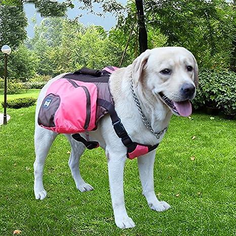 ParaCity - Mochila para perro con arnés ajustable, para viajes ...