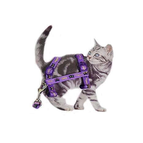 ASOCEA Arnés Ajustable para Gato y Correa para Mascota, Collar de Nailon con Correa para