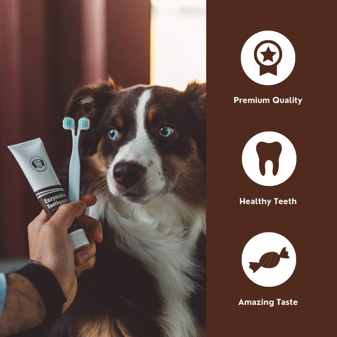 Freshbarks Dog Dental Kit   Two Tubes of The Best Enzymatic Dog Toothpaste and One Specially Designed Double Headed Dog Toothbrush   Clean Away Tartar and Plaque and Prevent Dental Infections: Health & Personal Care