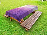 Lunarable Nature Outdoor Tablecloth, Sunset Horizon Over Lavender Field in French Provence Floral Rural Picture Image Print, Decorative Washable Picnic Table Cloth, 58 X 120 inches, Violet
