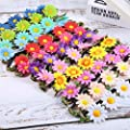 Bememo 12 Pieces Multicolor Lady Girl Fashion Flower Crown Floral Garland Headbands for Festival Wedding Party