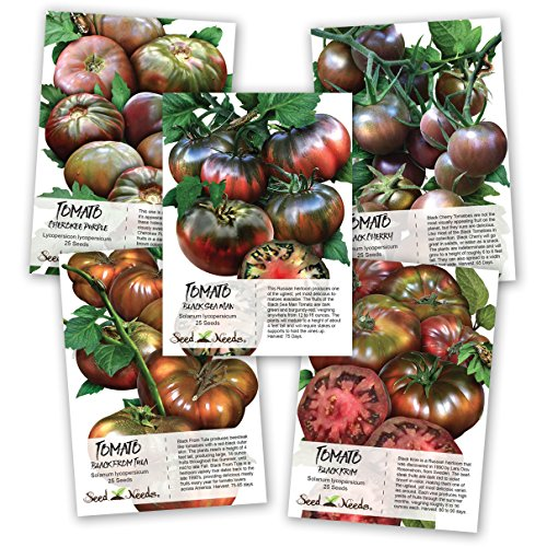 (Black Tomato Seed Collection (5 Black Tomato Seed Packets) Non-GMO Seeds by Seed Needs)